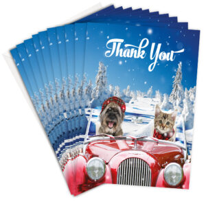 Driving Home Childrens Christmas Thank You Cards