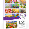 12 x Floral Art Style Blank Greeting Cards Pack with Envelopes. Blank Folding Notes Cards by Olivia Samuel for All Occasions