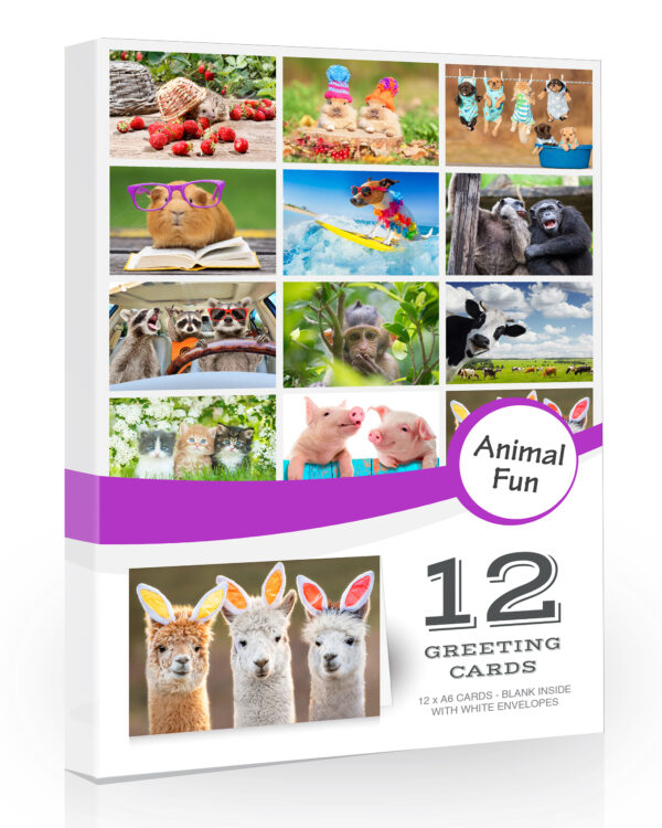 Funny Animal Greeting Cards from Olivia Samuel with Envelopes