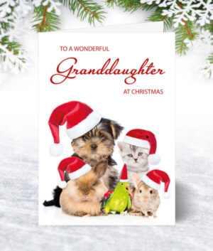 Granddaughter Christmas Cards