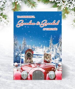 Grandma & Grandad Christmas Cards