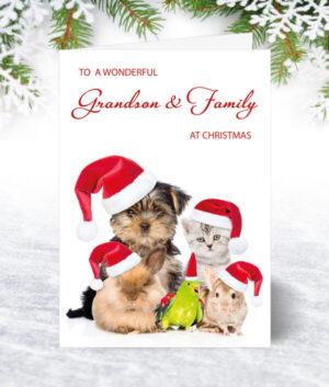 Grandson & Family Christmas Cards