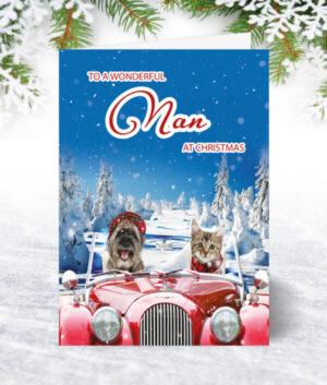 Nan Christmas Cards