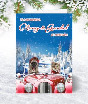 Nanny & Grandad Christmas Cards