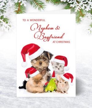 Nephew & Boyfriend Christmas Cards