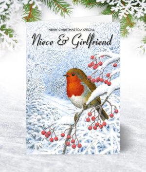 Niece & Girlfriend Christmas Cards